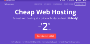 Hosting web hosting Review