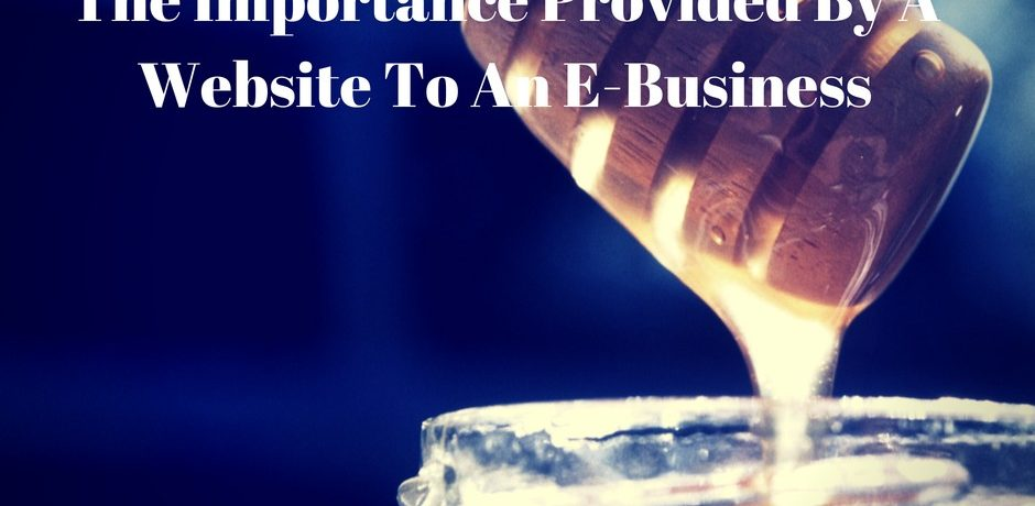 The Importance Provided By A Website To An E-Business